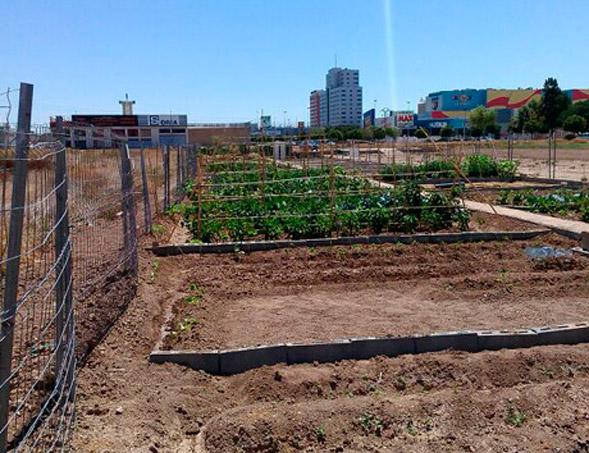 Microhuertos ecolgicos urbanos en valencia for Piscina alfafar